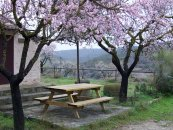Zona de pícnic