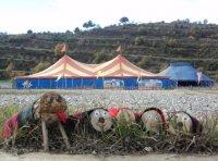 Festa del Tio al Circ a les Feixes